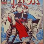 Thor 30x49